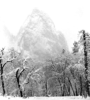 Snow Storm, El Cap Meadow