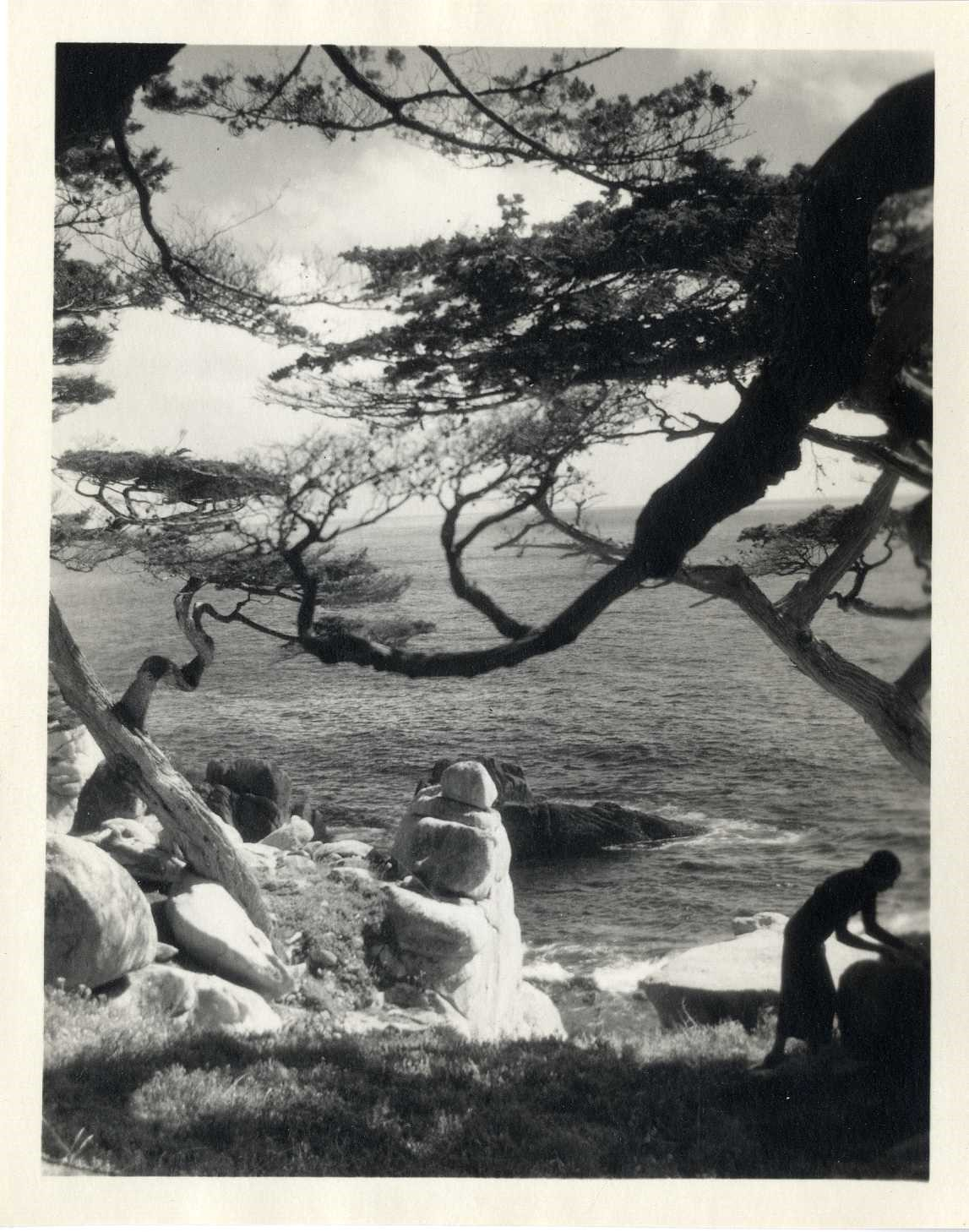 Coastal view with cypress trees and silhouetted woman, Monterey, 1921-22